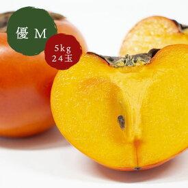 鳥取県八頭町産 こおげ花御所柿 5kg 箱入り 優 M 24玉 JA鳥取いなば