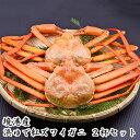 鳥取県境港産 カニ 紅ズワイガニ 2杯入り A級品(1尾約400〜500g) 小林冷蔵【期間限定】