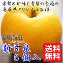 【産地直送 送料無料】 たにがみ農園 鳥取県産 新甘泉(しんかんせん) 6個(3L〜4L) 梨 ナシ 赤梨