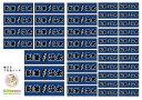 【送料無料】「横タイプ シックな千社札セット」大きさ3種類 計41枚 歌舞伎文字 漢字 勘亭流 江戸文字 和風 名刺 お名…