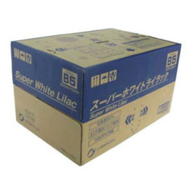 王子製紙 コピー用紙スーパーホワイトライラック SWLB5 B-5 500枚x10冊