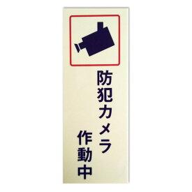 キョウリツサインテック 防犯プレート 「防犯カメラ作動中」 BH2-6 アイボリー