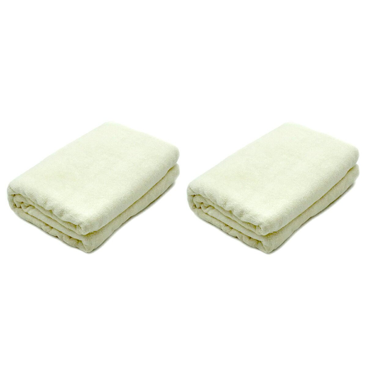 TAKEFU バスタオル ナチュラル 2枚セット (竹布 タオル) 【 TAKEFU 竹布 抗菌 消臭 吸水 制電 タオル バスタオル 】