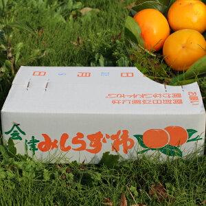 【送料無料】【期間限定!配送指定不可】2019年産 会津みしらず柿 【 3Lサイズ 5kg 】 約17玉約5キロ