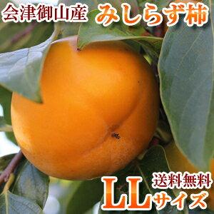 【送料無料】2019年産 会津御山産 会津みしらず柿 【 LLサイズ 5kg 】 約20玉約5キロ 2Lサイズ