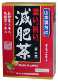 【山本漢方】 濃い。旨い。減肥茶 10g×24包