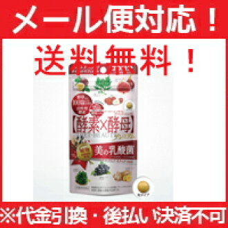 Yeast X エンザイムダイエットビューティ 60 (for 30 times) yeast X enzyme