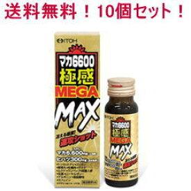 【送料無料!10個セット!】【井藤漢方製薬】マカ6600極感MEGA MAX 50ml×10個