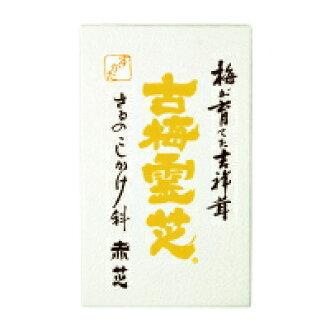 Ganoderma furume (up) 35 g