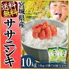 【送料無料】宮城県産ササニシキ5kg×2[白米/お米/ご飯]【TD】【米TRS】【RCP】
