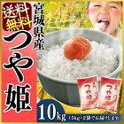 宮城県産つや姫10kg(5kg×2)[送料無料28年産白米お米ご飯]【TD】【TRS】【メーカー直送品】