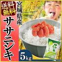 宮城県産 ササニシキ 5kg[送料無料 28年産 白米 ささにしき 白米 お米 ご飯]【TD】【TRS】 【メーカー直送品】【あす楽】