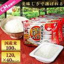 【ご飯パック】低温製法米のおいしいごはん 120g×40食パック送料無料 レトルトご飯 メガ盛り パックごはん パックご…