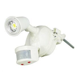 LEDセンサーライト クラブアイW SLS-CE10W-1P送料無料 電燈 電灯 らいと 明かり 電燈らいと 電燈明かり 電灯らいと らいと電燈 明かり電燈 らいと電灯 日動工業