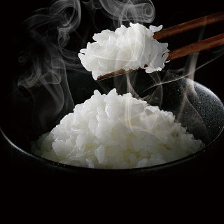 【送料無料】銘柄炊きジャー炊飯器RC-MA30-Bアイリスオーヤマ【炊飯ジャー炊飯機3合炊き】