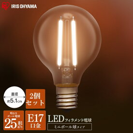 【2個セット】 LED電球 電球 アイリスオーヤマ アイリス LED フィラメント電球 フィラメント LDG2N-G-E17-FC LDG2L-G-E17-FC 新生活 新生活応援 一人暮らし ひとり暮らし 独り暮らし 長寿命 低紫外線 水銀レス 明るい 照明 電球色 昼白色 人気 おすすめ