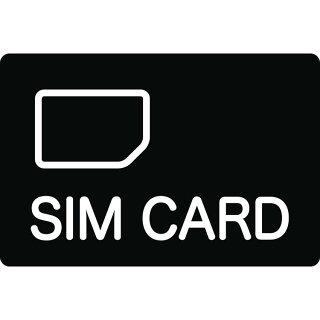 シムカードグローバル海外1GBグローバル対応SIMカード(1GB)キングジム