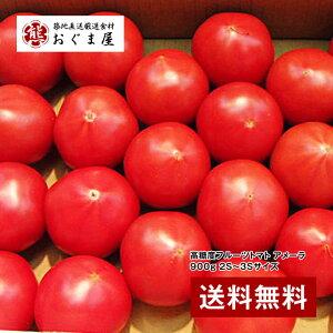 築地・野菜の目利きが厳選!『高糖度フルーツトマト アメーラ 900g 2S〜3Sサイズ』 【ギフト】 【送料無料】【内祝い】【楽ギフ_のし宛書】