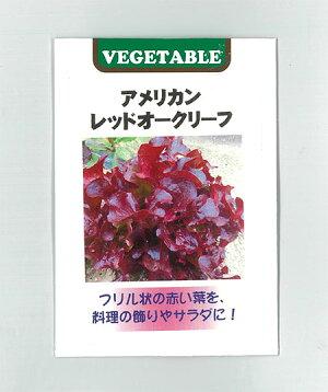 [野菜タネ]レタス:アメリカンレッドオーク