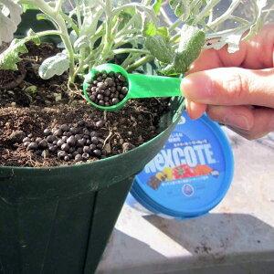 ネクスコート・いろいろな植物用500gとハイポネックス原液殺虫剤入り450mlのセット