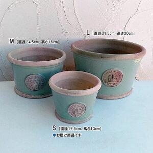 キューガーデンの釉薬鉢:チャートウェルグリーンS(直径17.5cm、高さ13cm)