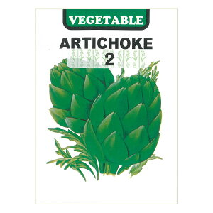 アーティチョーク2 の種*[野菜タネ]