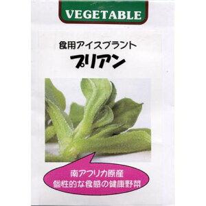 食用アイスプラント プリアン[野菜タネ]