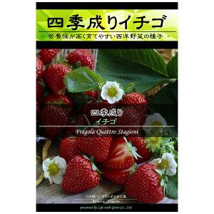 イチゴ:四季成りイチゴ[野菜タネ]*