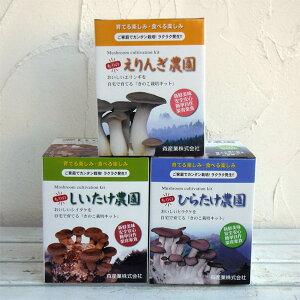野菜の苗/きのこ栽培3種セット(しいたけ・ひらたけしめじ・エリンギ)
