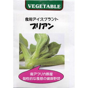 食用アイスプラント プリアン 2袋セット(人気沸騰中の珍しい野菜)[野菜タネ] [タネ]