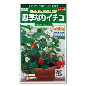 四季なりイチゴ:ワイルドストロベリー[タネ]