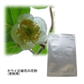 果樹の苗/キウイの花粉(キウイ受粉用)2袋セット[タネ]