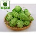 野菜の苗/ホップ 雌株 3〜3.5号ポット 4株セット