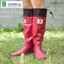 バードウォッチング長靴(収納袋付)レッドM