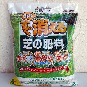 芝生用:まいてすぐ消える芝の肥料1kg(15-15-10)