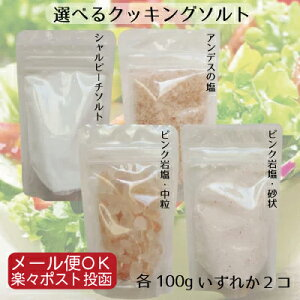 【食用・入浴用OK】ヒマラヤ岩塩ピンクソルト・アンデス岩塩・シェルビーチソルト(海塩) 組み合わせ自由に選べる食塩 お試しセット 100g×2