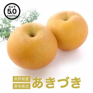 【送料無料】 長野県産 あきづき 完熟 約5kg お取り寄せ 高級フルーツ スイーツ 旬の果物 産地直送 お買い得 秋の味覚 フルーツ