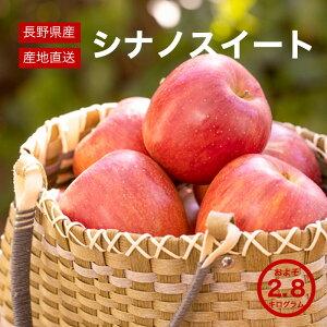 【送料無料】 長野県産 シナノスイート りんご 完熟 約2.8kg ご自宅用 お取り寄せ 高級フルーツ スイーツ 旬の果物 産地直送 お買い得 秋の味覚 フルーツ