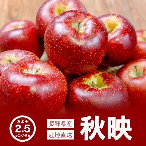 【送料無料】長野県産 秋映 りんご 完熟 約2.5kg ご自宅用 お取り寄せ 高級フルーツ スイーツ 旬の果物 産地直送 お買い得 秋の味覚 フルーツ お取り寄せ