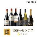 【10月11日以降順次出荷】ワイン ワインセット 100%モンテス6本セット MM10-1 [750ml x 6] 送料無料