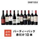 ワイン ワインセット パーティーパック 赤だけ10本 AQ11-2 [750ml x 10] 送料無料
