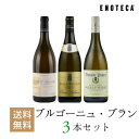 ワイン ワインセット ブルゴーニュ・ブラン3本セット BB6-1 [750ml x 3] 送料無料