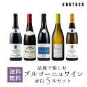 ワイン ワインセット 品種で愉しむブルゴーニュワイン赤白5本セット BR9-1 [750ml x 5]