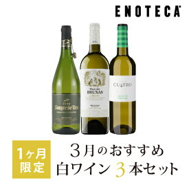 ワイン ワインセット 3月のおすすめ白ワイン3本セット KK3-2 [750ml x 3]