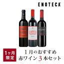 ワイン ワインセット 1月のおすすめ赤ワイン3本セット KK1-5 [750ml x 3] 送料別