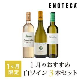 ワイン ワインセット 1月のおすすめ白ワイン3本セット KK1-6 [750ml x 3] 送料別