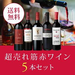 ワインワインセット超売れ筋赤ワイン5本セット[750mlx5]送料無料