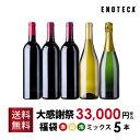 ワイン ワインセット【完全数量限定】楽天大感謝祭3万円福袋(赤白泡ミックス5本) RF2-1 [750ml x 5] 【送料無料】