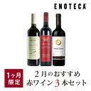 ワイン ワインセット 2月のおすすめ赤ワイン3本セット KK2-1 [750ml x 3]
