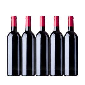 ワイン ワインセット 夏休み福袋 赤のみ5本 NF7-2 [750ml×5] 送料無料
